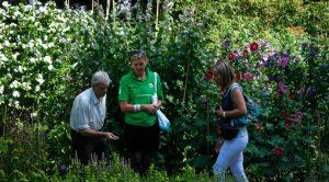 Botanische-tuin3-1038x576