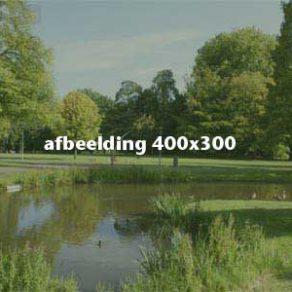 afb.400x300