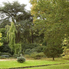 Arboretum_Trompenburg_Nl_2